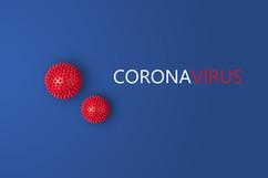 corona\ 242x161